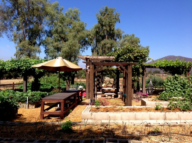 July garden scene