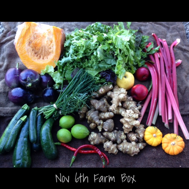 farm box nov 6th