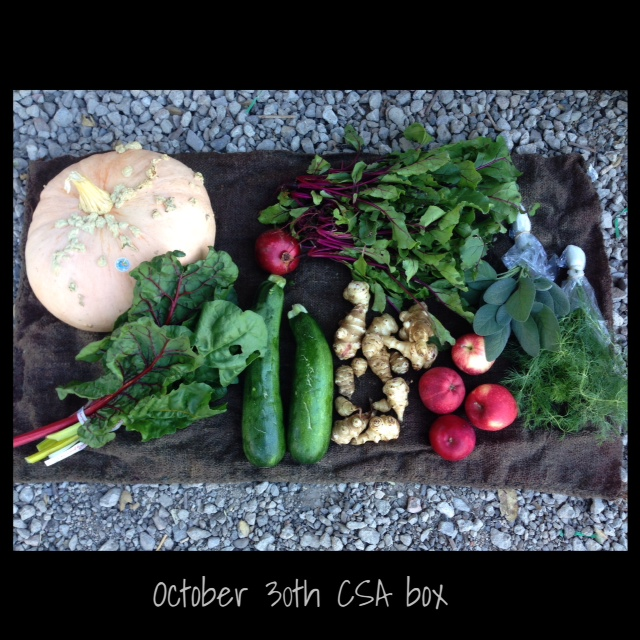 farm box Oct 30