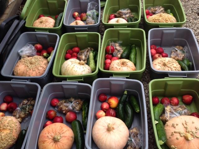 farm boxes 1
