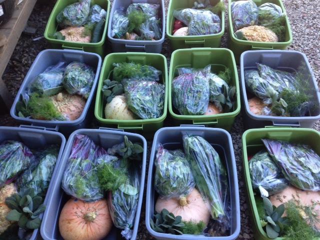 farm boxes 2