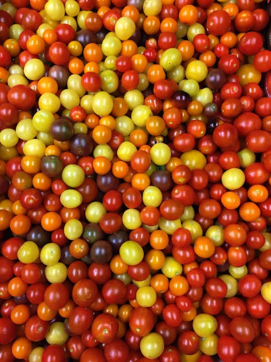 cherry tomatoes 3